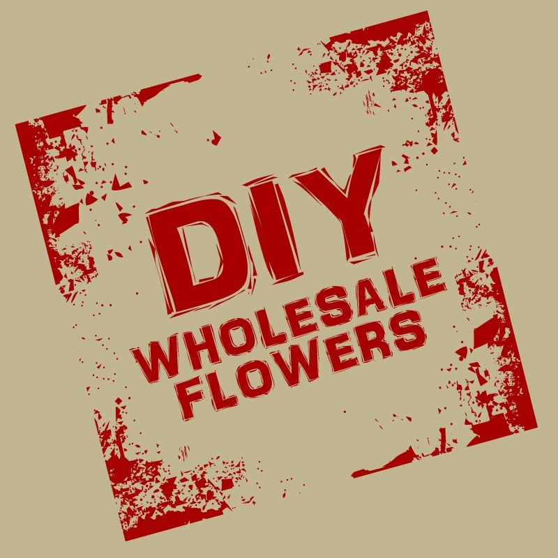 Small Business Spotlight of the Week: D.I.Y. Wholesale Flowers