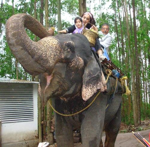 12 Questions: Meet Vinay and Asha (India)