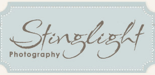 Small Business Spotlight of the Week: Stinglight Photography