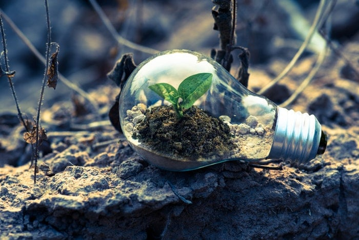 Sustainable Design Can Help Your Small Business and Improve the Environment